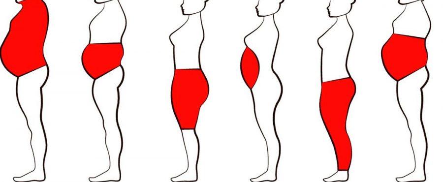 تعرف على أماكن تخزين الدهون في الجسم مع مركز أوركيد كلينك